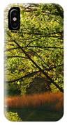 Evening Light 2 IPhone Case
