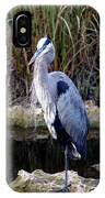 Everglades Heron IPhone Case