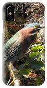 Everglades Inhabitant IPhone Case
