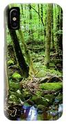 Evolution Of A Forest In Spring  IPhone Case