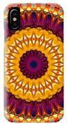 Expression No. 7 Mandala IPhone Case