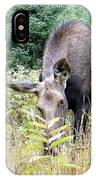 Eye-contact With The Moose IPhone Case