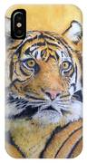 Eye Of The Tiger IPhone X Case