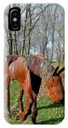 Fabulous Fillie IPhone Case