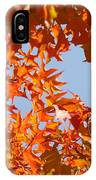 Fall Art Prints Orange Autumn Leaves Baslee Troutman IPhone Case