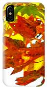 Fall Ball IPhone Case