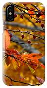 Fall Berries II IPhone Case