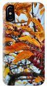 Fall Berries IPhone Case