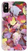 Fall Carpet IPhone Case
