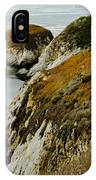Fall Cliff IPhone Case