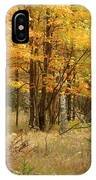 Fall Color 12 IPhone Case