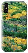 Fall Color In The Eastern Sierras California IPhone Case