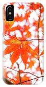 Fall Color Maple Leaves At The Forest In Kumamoto, Japan IPhone Case
