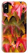 Fall Colored Ivy IPhone Case