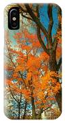 Fall Colors 2 IPhone Case