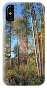 Fall Colors Along The Norway Beach Loop IPhone Case