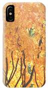 Fall Colors At Cape May IPhone Case