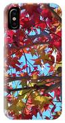 Fall Colors I IPhone Case
