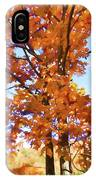 Fall Colors Looking Awesome IPhone Case