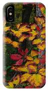 Fall Decorating IPhone Case