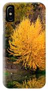 Fall Fireworks IPhone Case