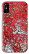 Fall Foilage IPhone Case