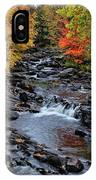 Fall Foliage In Dickinson, Ny IPhone Case
