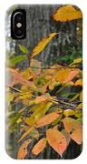 Fall Foliage IPhone Case
