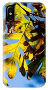Fall Foliage IPhone Case
