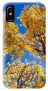 Fall Foliage Near Ruidoso Nm IPhone Case