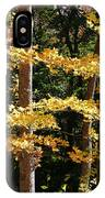 Fall Forest 1 IPhone Case