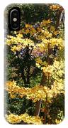 Fall Forest 3 IPhone Case