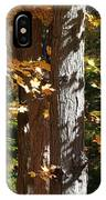 Fall Forest 4 IPhone Case