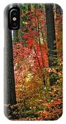 Fall Forest Splendor IPhone Case