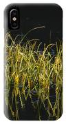 Fall Grasses - Snake River IPhone Case