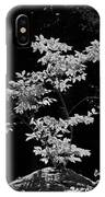 Fall Illumination In B/w IPhone Case