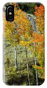 Fall In Colorado IPhone Case