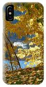 Fall In Kaloya Park 3 IPhone Case