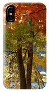 Fall In Kaloya Park 4 IPhone Case