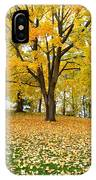 Fall In Kaloya Park 7 IPhone Case
