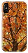 Fall In Kayloya Park 2 IPhone Case