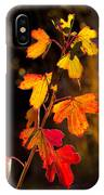Imperfection Perfection IPhone Case