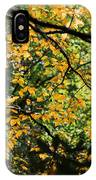 Fall Leaves In The Smokies IPhone Case
