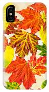 Fall Leaves Pattern IPhone Case