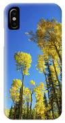 Fall Light IPhone Case