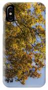 Fall Magic IPhone Case