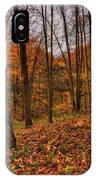 Fall On The Ice Age Trail IPhone Case