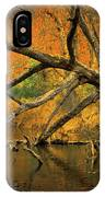 Fall Scene IPhone Case