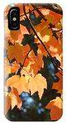 Fall Tree Art Prints Orange Autumn Leaves Baslee Troutman IPhone Case