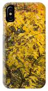 Fall Tree Leaves 2 IPhone Case